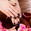 Female hands with black manicure — Stock Photo #70789673