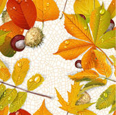Seamless pattern from autumn leaves and chestnut on the  thread  — Stock Vector