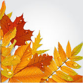 Yellow and green autumn leaves background 1 — Vector de stock