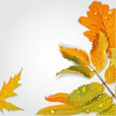 Yellow and green autumn leaves background — Vecteur
