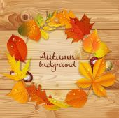 Yellow and red autumn leaves and chestnut  wreath on wooden back — Stock vektor