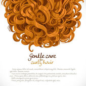 Curled hair background — Stock Vector