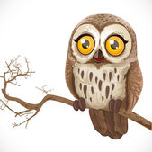 Cute cartoon owl sitting on a branch isolated on a white backgro — Stock Vector