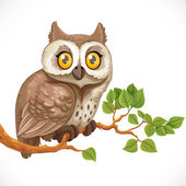 Cute owl sitting on a branch isolated on a white background — Stock Vector