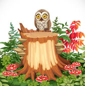 Cute owl sitting on stump surrounded by toadstools isolated on a — Stock Vector