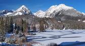 Frozen Strbske Pleso in High Tatras — Stock Photo