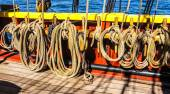 Coiled rope lines  — Stock Photo