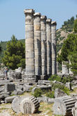 Ionic columns Temple of Athena  — Стоковое фото