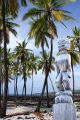 Coconut palms and statue  — Stockfoto