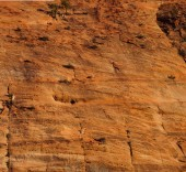 sedimentary sandstone layers — Stock Photo