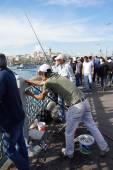 Locals fish for sardines — Stok fotoğraf