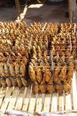 Sušené ryby na prodej — ストック写真