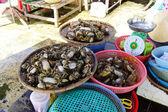 Krabbor i Hoi en marknad — Stockfoto