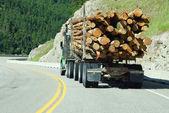 Loggning lastbil på berget motorväg — Stockfoto