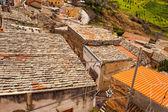 莱翁福尔泰屋顶的视图 — 图库照片