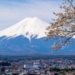 Постер, плакат: The mount Fuji