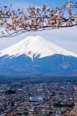 The mount Fuji — Stock Photo