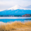 Постер, плакат: The mount Fuji in Japan