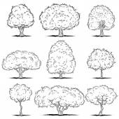 Set of deciduous trees. Line art — Vetor de Stock