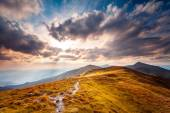 Carpatian summer landscape. — Stock Photo