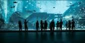 Large Aquarium in Singapore — Stock Photo