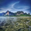Maya bay Phi phi leh island Thailand — Stock Photo #72909485