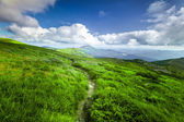 Green mountain   landscape. — Stock Photo