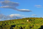 Provence rural landscape, France — Stock Photo