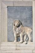 Venetianskt lejon — Stockfoto