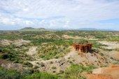Olduvai Gorge — Stock Photo