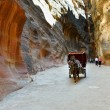 Horse carriage in a gorge, Siq canyon in Petra — Stock Photo #70820099