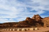 Desert camp  — Stock Photo
