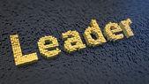 Leader cubics — Stock Photo