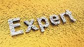 Pixelated Expert — Stock Photo
