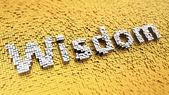 Pixelated Wisdom — Stock Photo