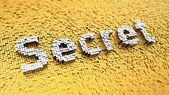Pixelated Secret — Stock Photo