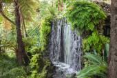 Waterfall, Madeira — Stock Photo