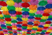 Lots of umbrellas coloring the sky — Stock Photo