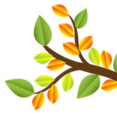 Branch with autumn leaves on a white background — Stock Vector