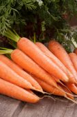 Fresh carrot bunch — Stockfoto