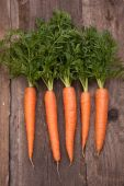 Fresh carrot bunch — Stock fotografie