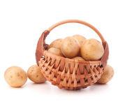 Potato  in basket — Stock Photo