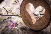 Corazón ligero — Foto de Stock