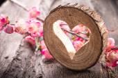 Herz-Loch in Holz und Blumen — Stockfoto