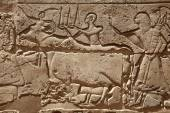 Mısır Tapınağı kabartma resimler — Stok fotoğraf