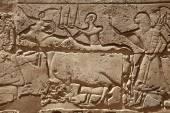 Relief figures in egyptian temple — Stok fotoğraf