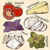 Lasagna ingredients set — Stock Vector