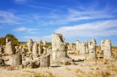 Stone Forest — Stock Photo