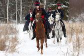 Jízda koni — Stock fotografie