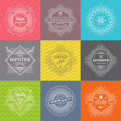 Vector set of line signs and emblems with hipster symbols and type design on a colored pattern background — Stock Vector